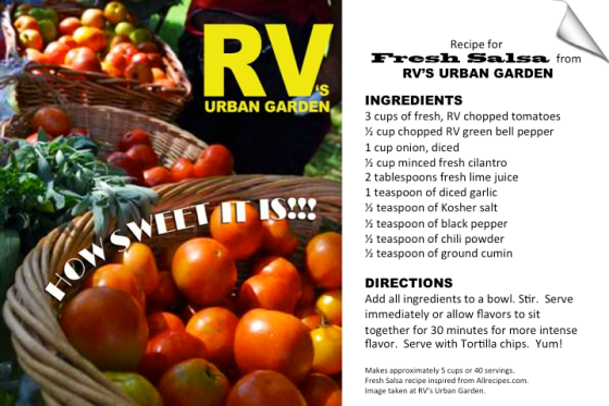 RV's Fresh Salsa Recipe
